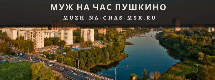 Муж на Час, вызвать мастера в Пушкино