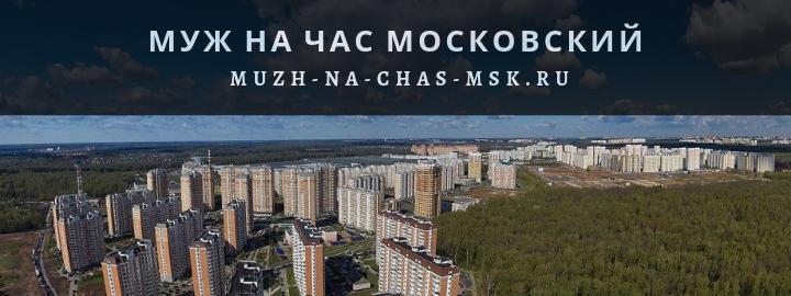 Мастер на час в Московском недорого